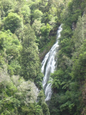 Top of Waterfall Near Waihi Village