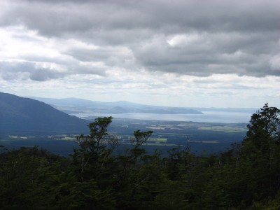 Lake Taupo Viewed from the Urchin Summit