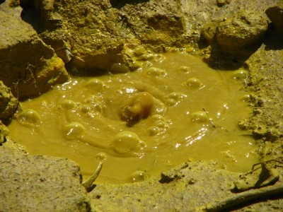 Yellow Boiling Mud