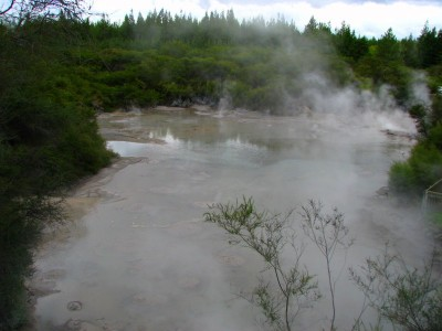 Wai O Tapu Mud Pools